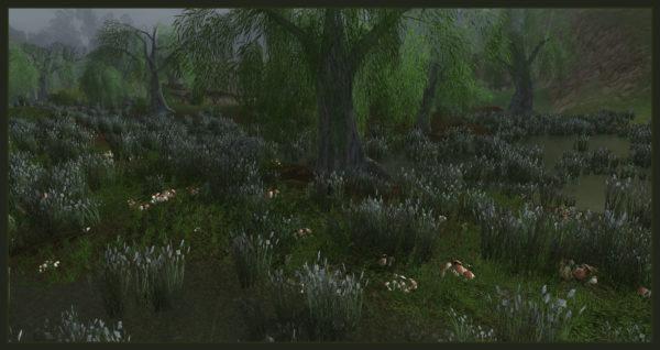 Frogmoor